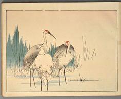 WATANABE Seitei, artist. SEITEI KACHÔ-CHÔ. Kyôto & Tôkyô, Unsôdô, n.d. [c. 1900]