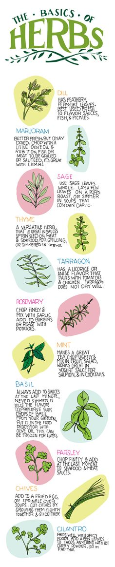 Herbs are great to cook with, but pairing the right herb with the food you're cooking can often be a challenge. Here's a simple cheat sheet… # Food and Drink pairing cheat sheets The Basics of Herbs: Cooking Cheat Sheet Cooking Herbs, Cooking Tips, Cooking Food, Cooking Videos, Basic Cooking, Cooking Classes, Food Food, Food Hacks, Gardening Tips