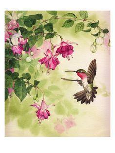 Hummingbird with Flowers - Cross stitch pattern pdf format Plant Drawing, Painting & Drawing, Drawing Flowers, Watercolor Bird, Watercolor Paintings, Hummingbird Art, Poster Prints, Art Prints, Beautiful Birds