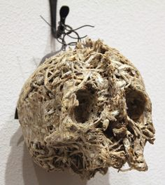 Helen Altman, 'Anchovy Skull', 2009