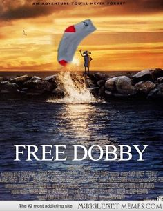 Dobby needed his own feature film