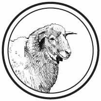 Half Lamb Share, Grass-Fed | Heritage Foods USA