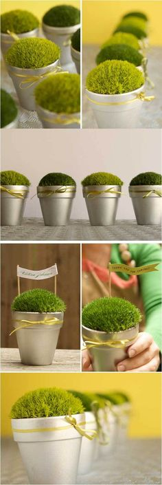 diy moss pots. great for place cards, to id buffet dishes, for general decor.