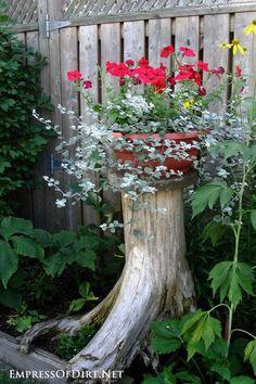 Flower planter on a tree stump | 21 Gorgeous Flower Planter Ideas
