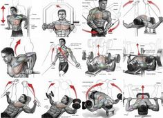 Chest Expert Workout Plan - Healthy Fitness Exercises Training - Yeah We Train !
