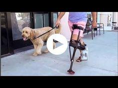 Crutches: iWALK 2.0 Hands Free Crutch by iWALKFree, Inc-Houston,TX #eCareMedical #houston @eCareMedical Shop @ eCareMedicalSupplies.com