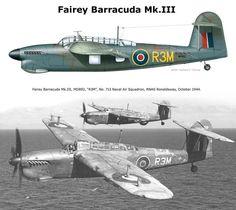 Navy Aircraft, Ww2 Aircraft, Military Jets, Military Aircraft, Ww2 Planes, Royal Air Force, Aviation Art, Royal Navy, World War