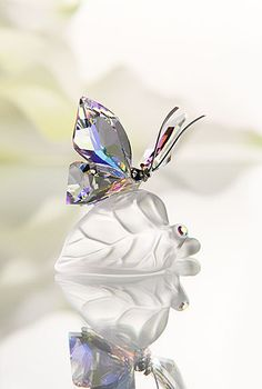 """Swarovski Sparkling Butterfly   $100.00 2 1/4""""   Item# 1113559        This delicate butterfly in faceted Crystal Aurora Borealis daintily flutters over a matte crystal leaf. The silver-tone metal antennae create an interesting play of elements. Add a touch of natural beauty to your home with this exquisite piece!"""
