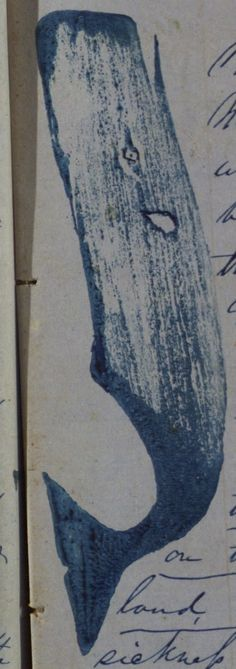 Whale in the journal of Henry De Forrest