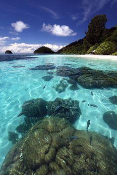 Turquoise, Kawe Island, Indonesia