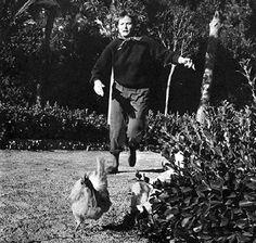 0 ingrid bergman running after chickens