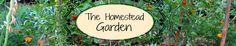 How to Grow Peaches - The Homestead Garden | The Homestead Garden