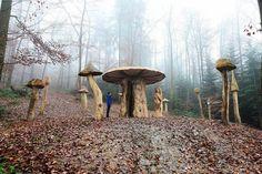 Mycelium mushroom path Wonnhaldestraße 79100 Freiburg im Breisgau Beautiful Places To Travel, Beautiful World, Nature Activities, Forest Floor, Learn German, Camping And Hiking, Outdoor Life, Far Away, Paths