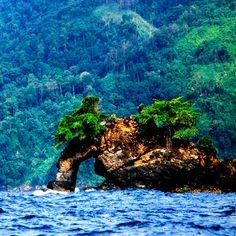 Parque Nacional Península de Paria Edo Sucre, Venezuela