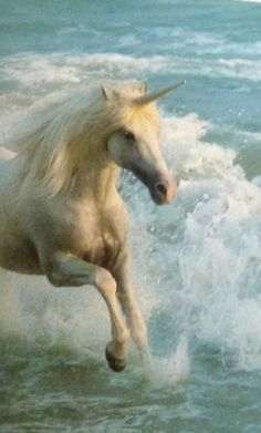 Unicorns I have Known/ vintage/ 1983 /stunning by LDphotography