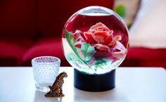 Wer hätte gedacht, dass eine Schneekugel mit Rose, ein kleiner Kerzenhalter aus Glas und eine winzige Leopardenfigur zusammenpassen würden?