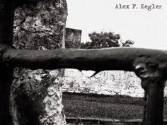 Alex photograph project: The gate...