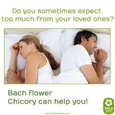 Do you sometimes expect too much from your loved ones? #Chicory #BachFlowerRemedies #Bachflowers