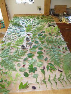 Ready to bundle   Ferns, wild cherry (prunus) tips, pelargon…   Flickr