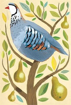 Daron Parton's Partridge in a pear tree - http://watermarkltd.com/artist.aspx?ty=i&a=10#/?w=4615&pt=Normal&p=2&ty=i&a=10