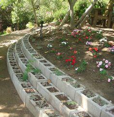 Volver a Larkrise: Tiempo de resorte y una gira de jardín