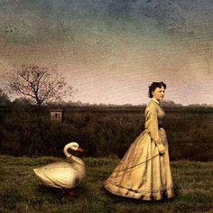Всюду Леда Leda and swan