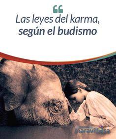 Las leyes del karma, según el budismo El budismo es una filosofía y una religión compuesta de enseñanzas prácticas, como la meditación por ejemplo, que pretende inducir una transformación en el interior de quien la practica. Promueve el desarrollo de la sabiduría, la conciencia y la bondad para alcanzar un estado de iluminación.