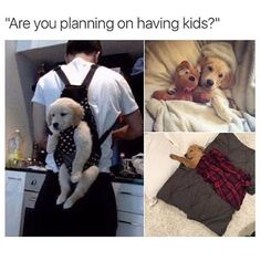 """We're having a few babies. Baby puppies."" @MyStyleSays @MyStyleSays"