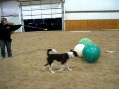 TeeVee driving the ball (intermediate class)