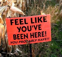I love a good condescending corn maze sign. Corn mazes can be spooky even in the daylight.