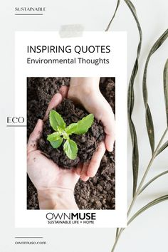 As we do our best each day and promise ourselves to do even better the next. Collecting quotes about saving the environment helps keep us mindful and inspired. Sustainable messages add a tool in our eco-tool box. Native American Proverb, Tomorrow Will Be Better, Go Green, Sustainable Living, Mother Earth, Compost, Sustainability, Something To Do, Environment