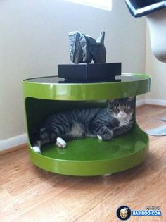41 Pictures Of Awesome Pet Friendly Furniture