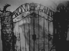 Welcome to Wonderland. We hope you enjoy your stay.