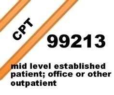 CPT 99213 Code Description, Examples, RVU, Distribution Data. This is the midlevel established patient, clinic or other outpatient service.