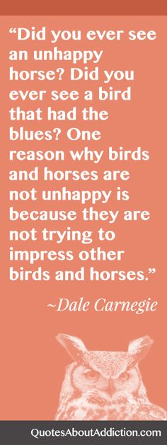 Great #inspirational #quote by Dale Carnegie: http://www.quotesaboutaddiction.com/unhappy-horse-bird/