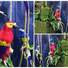 #jungle #jungleparty #jungledecor #parrot #pappagallo #partydecor #allestimenti #party #event #eventi #liane #piante #piamteartificiali #libellula #talea #taleaingrosso #taleaallestimenti
