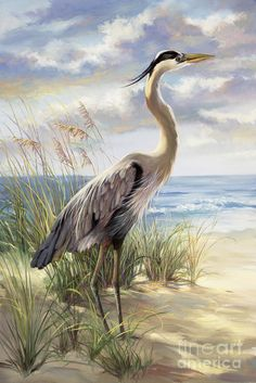 Heron Print featuring the painting Blue Heron Deux by Laurie Hein