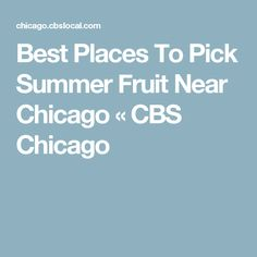 Best Places To Pick Summer Fruit Near Chicago « CBS Chicago
