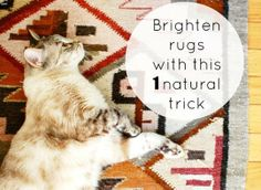 Brighten and Clean Your Rugs With This 1 Natural Ingredient salt and hot water.  Like this rug!