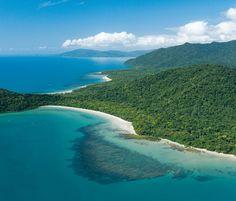 "travelingwaters: ""oceaniatropics: "" coastal tropical rainforest, queensland, australia "" Health, Fitness, and Travel """