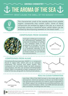 """""""Sound of Adventure""""   compoundchem:  Today's graphic looks at the compounds behind the characteristic smell of the seaside. Read more about where these compounds come from here:http://wp.me/p4aPLT-nf"""