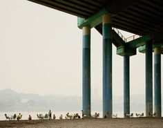 Nadav Kander captures how locals appropriate themselves of an environment for their leisure picnics underneath a highway overpass, while fishing among the fog/smog in Chonqing. The Yangtze River crosses China almost from West to East. A river, which concentrates one in every  18 people in the planet; but also a line, which used to divide the whole country into 2 domains: the heating-allowed dwellings north of this border line and the unheated houses in its southern region.