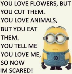 Here we have some of Hilarious jokes Minions and Jokes. Its good news for all minions lover. If you love these Yellow Capsule looking funny Minions then you will surely love these Hilarious jokes… Funny Minion Pictures, Funny Minion Memes, Minions Quotes, Memes Humor, Hilarious Jokes, Funny Pics, Funny Texts, Minion Sayings, Minion Humor