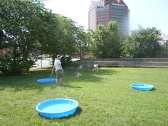 #Baltimore City - Canton dog park (East of Fells Point)