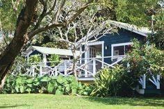 The Hawaiian plantation home is usually an older home. They were made from strong woods and many still are here today in Hawaii.