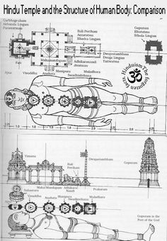 "Hindu Temple and the Structure of Human Body: Comparison ""Everything is governed by one law. A human being is a microcosmos, i. Temple India, Hindu Temple, Indian Temple Architecture, Ancient Architecture, Temple Drawing, Lord Ganesha Paintings, India Painting, Hindu Culture, Kali Goddess"