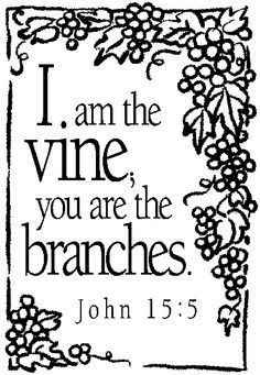 I Am The Vine You Are Branches Coloring Page