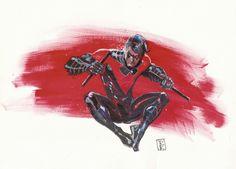 Nightwing by Rod Reis