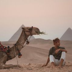 Someone please take me to Egypt so I can see the camels and pyramids