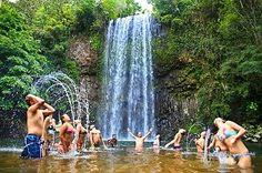 Sightseeing Tours Australia: Waterfalls in the Atherton Tablelands
